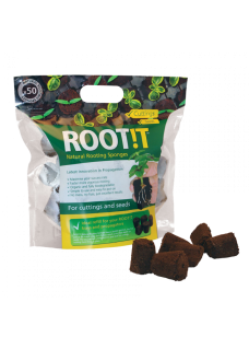 Anzuchtset ROOT!T