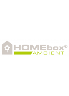 HOMEbox Ambient Q240 PAR+ 2,4x2,4x2m 5,7qm