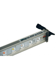 SANlight FLEX 10 LED Modul 10W