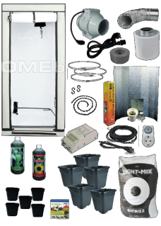 HOMEbox Ambient Q80 Grow Set Angebot Beginners 250W