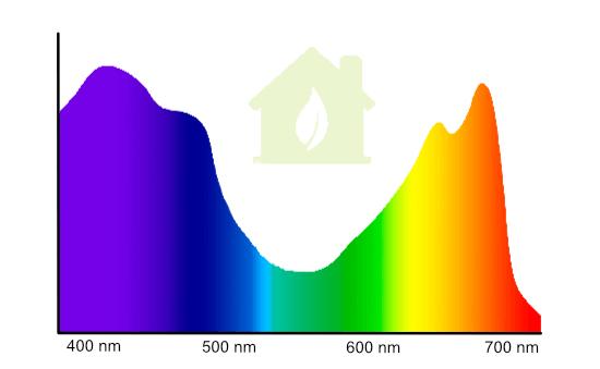 Lichtspektrum für Pflanzen