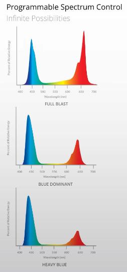 SolarSystem 550 VEG Spektrum
